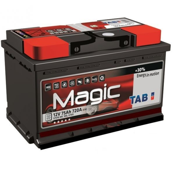 Аккумулятор автомобильный TAB Magic 62Ah 600A, R+ низкий
