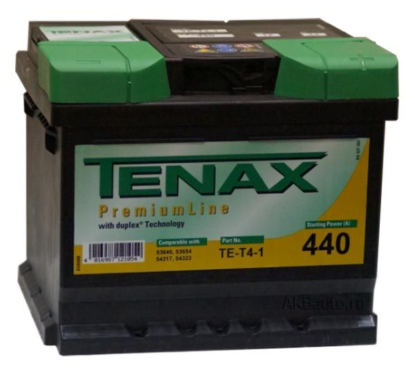 Аккумулятор TENAX PL 44 R+